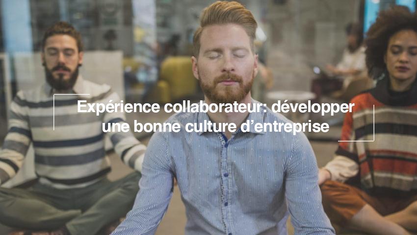 Pour améliorer votre expérience collaborateur, commencez par soigner votre culture d'entreprise